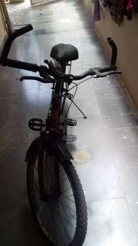 Sk bikes virgo