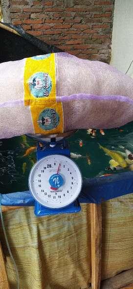 Media filter jaring nelayan kemasan karung bawang 1kg