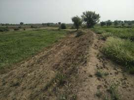 Agriculture mix land available for sale very reasonable price