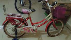 Sepeda anak ban 18