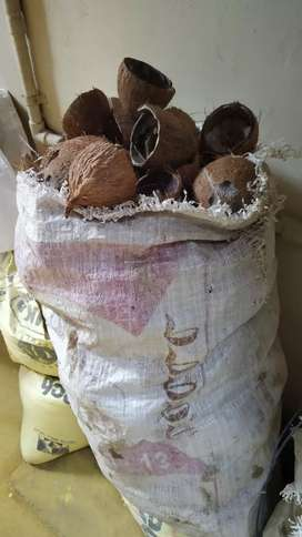Coconut shell for sale