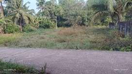 Land sale in kapu