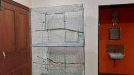 3 floor Birds strong cage