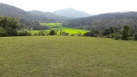 4 ACKRS AGRICULTURE LAND FOR SALE