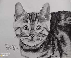 Hyper realistic cat potrait