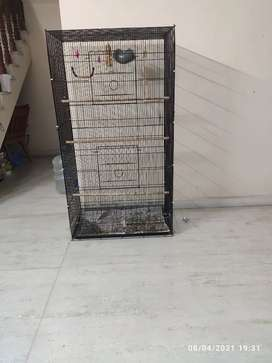 Bird Cage-Large Size Fixed price