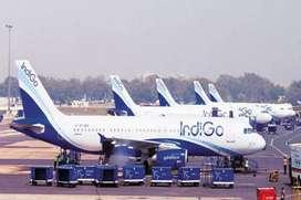 Urgent hiring for ground staff indigo airlines..