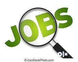 Indigo Airline Security Guard & Ground Staff Job