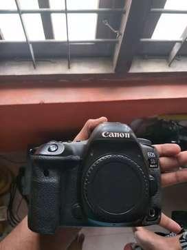 CANON 5D MARK 4 (Rent)