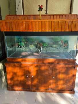 Dijual aquarium