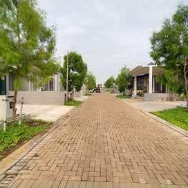 Sewa Rumah 1Lantai Kedaton BSB Dkt Fasilitas Kolam Renang Unika Mall
