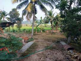 1.85 Acre Farm House in Njaliyakuzhi, Kottayam