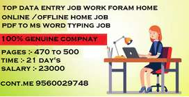He company which have rights to give home based job of data entry
