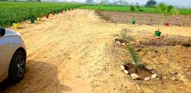 2700 per gaj plots for sale,near rishi colony back side Neelima vihar