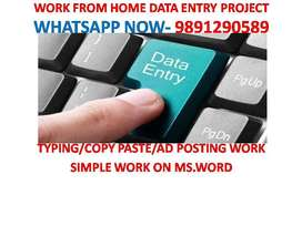 Typing Jobs Data Entry work 4000 to 8000 weekly Payments