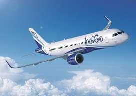 Indigo Airline Urgent hiring for Ground Staff