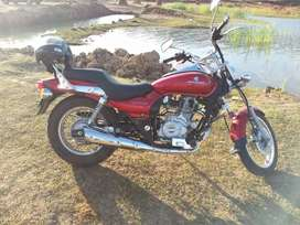 Avenger bike with good condition for sale in emergency