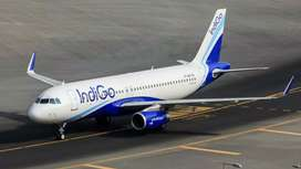 Ground Staff Job vacancy in INDIGO Airlines Job fresher / Experien