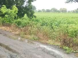 3 acre road touch farm for sell