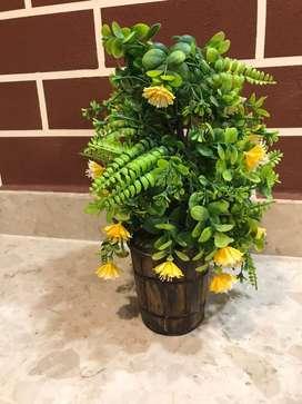 Flower Pot and Vase