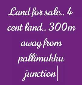 4 cent land for sale near Pallimukku