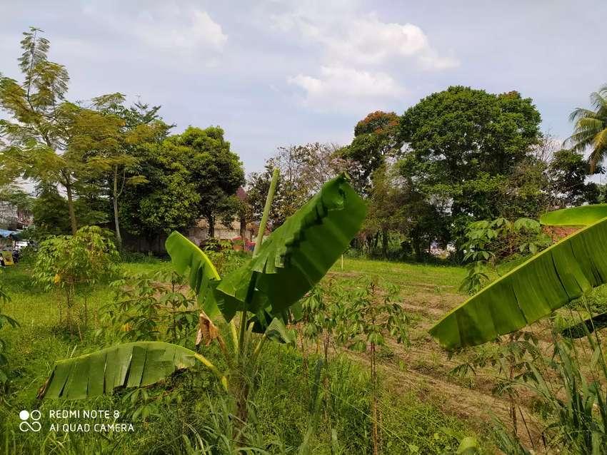 Jual lahan kosong persis pinggir jalan Raya Ciomas Bogor