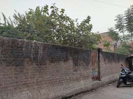 Residential plot of 1320 sq. ft area for sale in Lal Bangla, Kanpur