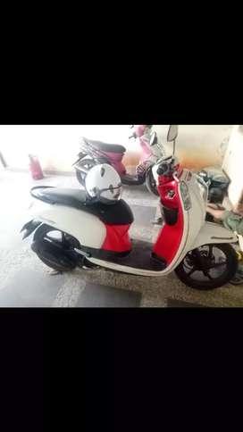 Honda scoopy 2013