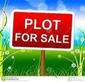 400 YARD PLOT ONLY IN 28000-/ PER YARD (TAKSHILA COLONY GARH ROAD)
