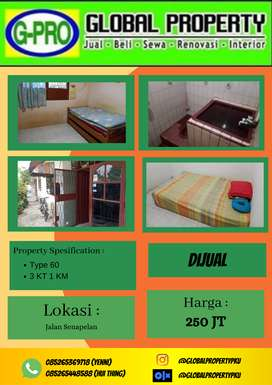 Dijual Rumah Murah Jalan Senapelan Pekanbaru Hanya 250 Jtan Saja