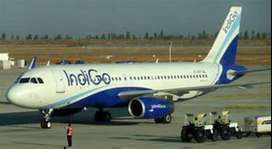 indigo Job vacancy for domestic and international Airline, Airports op