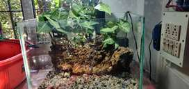 we are selling aquarium like any typ