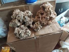 Wall rock wholesale price