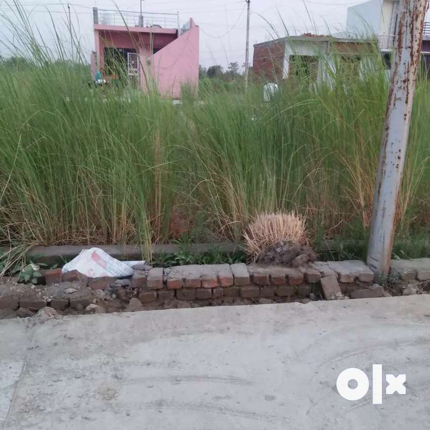 Plots available in reasonable price atRoad side,fully developed colony 0