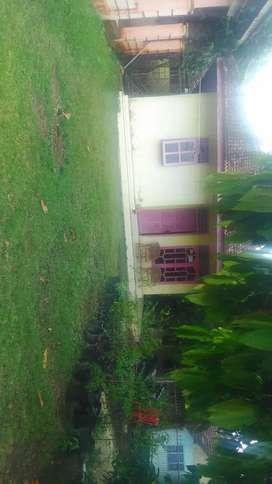 Rumah kampung di gumuk mas kabupaten pringsewu lampung