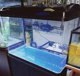 32 inch fish aquarium