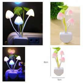Ready lampu jamur