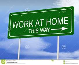 Peaceful job no need come to office just work daily 3-4 hours