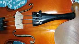 Advanced student violin. Handmade. Nice projection. Awesome sound