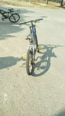 Recer bicycle for sale