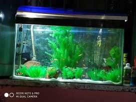Artificial planted aquarium with fish