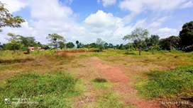 60 Cent Land  For Sale In Pookattupady  4 Lakhs Per Cent Negotiable