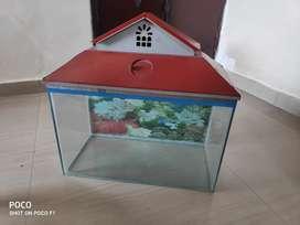 Glass Acquarium