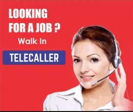 Telecaller Home Based job