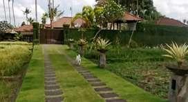 Private villa resort at Tabanan
