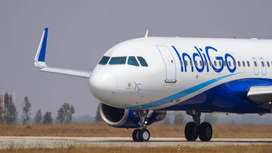URJENT HIRING IN INDIGO AIRLINES