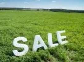 Urgent  Sell plot prime location