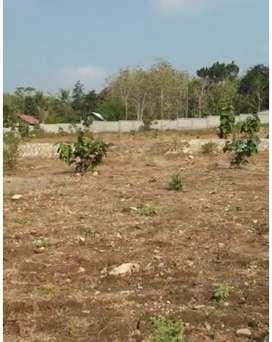 Tanah Luas di Kawasan Industri Kulon Progo Yogyakarta