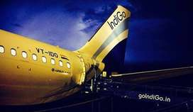 IndiGo Airlines Various Vacancies Direct Apply for Jobs.