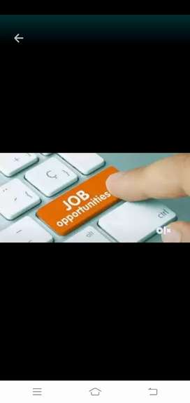 Marketing and sales Executive vacancy in Ltd companies only collecti
